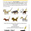 yellowdogproject_eng