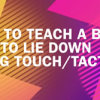 how-to-teach-lie-down